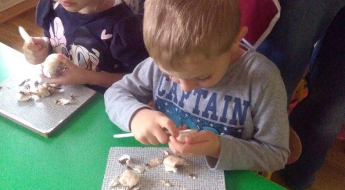 Sówki na grzybach