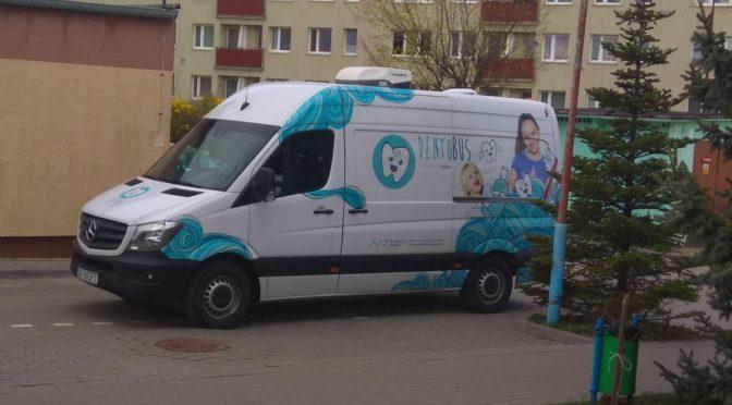 dentobus w Jodełce