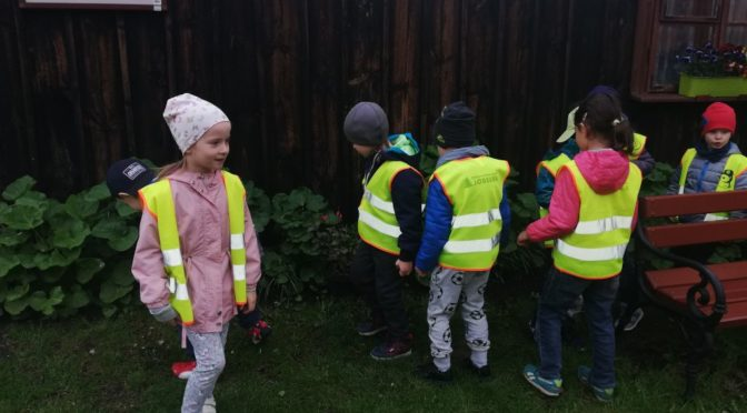 Sówki – odkrywcy