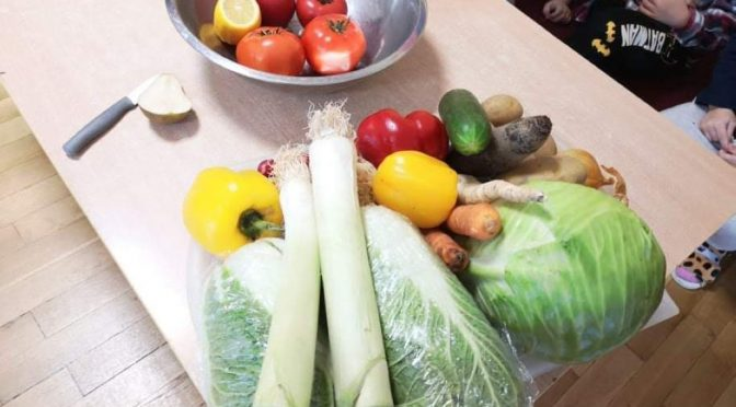 Kotki poznają warzywa i owoce