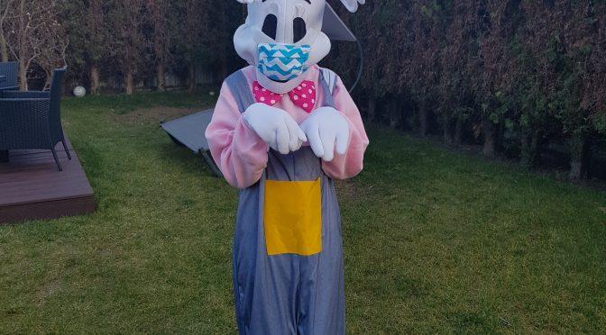 Wielkanocny Zając w Jodełce
